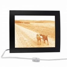 pet memorial picture frame turned into magical lamp